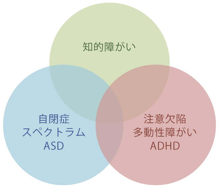 知的障がい・自閉症スペクトラムASD・注意欠陥多動性障がいADHD
